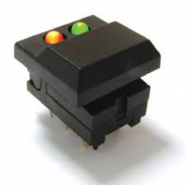 Illuminated Pushbutton Switches with dual lights